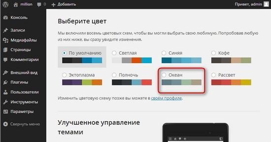 Выбираем цвет административной панели