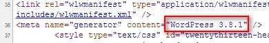 Исходный код страницы, версия вордпресса